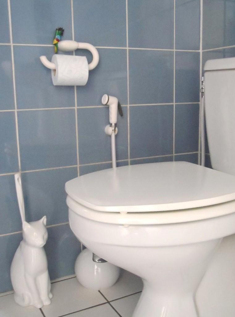 fotostrecke die handbrause f r das wc. Black Bedroom Furniture Sets. Home Design Ideas